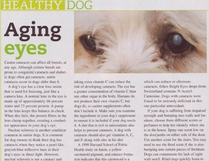 eye drops for dog cataracts media 3 th